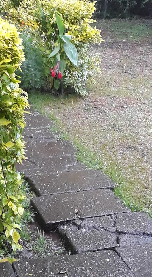 hail on March 6